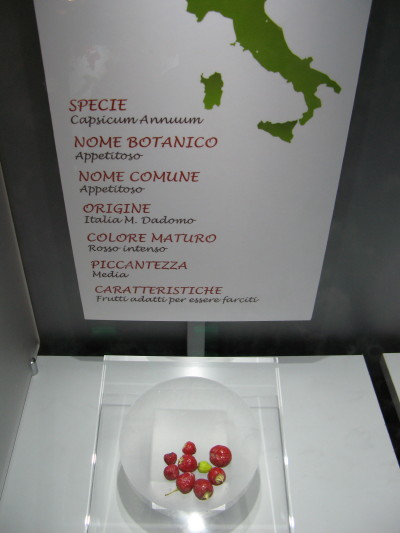 """Uno dei cartellini a Rieti con la provenienza """"M Dadomo"""""""