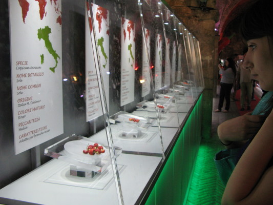 Il pubblico ammira i prodotti di Mario a Rieti